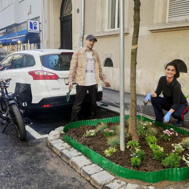 Martina Živković sa susjedom je krajem travnja odlučila u kazeti drveta posaditi biljke i napraviti ga ljepšim za sve svoje sugrađane