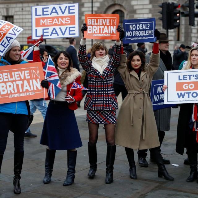 Pro-Brexit prosvjednice u Londonu