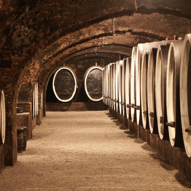 Vinski podrumi vinarije Kutjevo