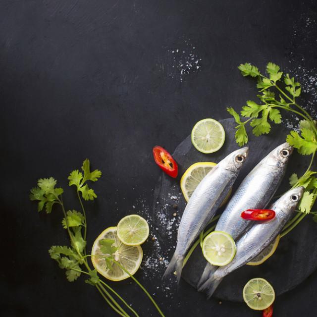 sardine naslovna