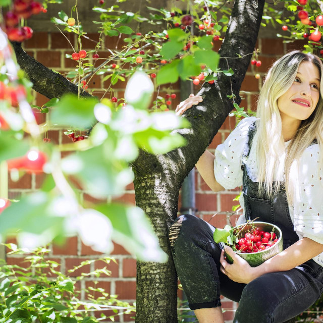 Novinarka Anita Šarić bere višnje u svom vrtu.