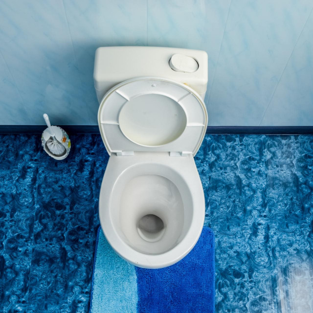 Toilet bowl in the toilet, toilet brush on the side. Blue floor in the toilet,Image: 529028181, License: Royalty-free, Restrictions:, Model Release: no, Credit line: Leonid Eremeychuk/Panthermedia/Profimedia