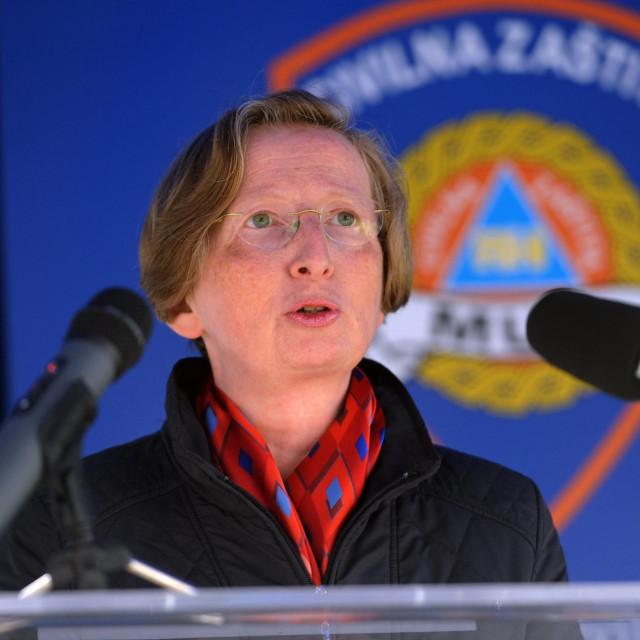 Ravnateljica Klinike za infektivne bolesti dr. Alemka Markotić