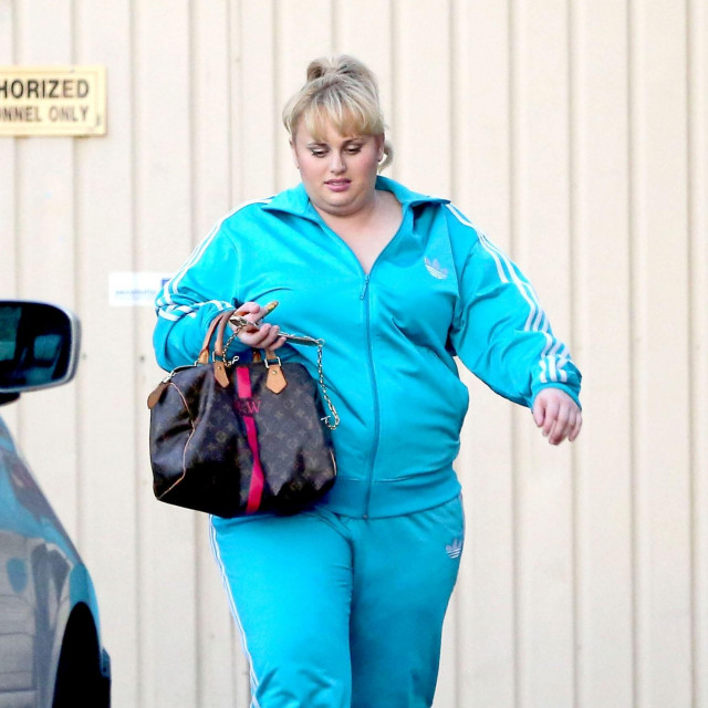 Rebel Wilson sports a pair of pink dog slippers and a blue track suit while out in West Hollywood.<br /> EXCLUSIVE April 10, 2013<br /> Job: 130410ND1 Los Angeles, CA USA,Image: 158375101, License: Rights-managed, Restrictions: 004, Model Release: no, Credit line: LOMELI/Bauer Griffin/Profimedia