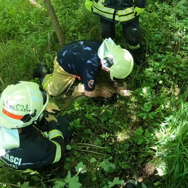 Vatrogasci spašavaju lane