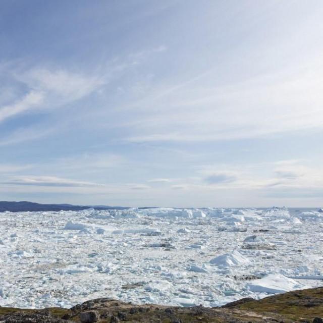 Arktik / Ilustracija