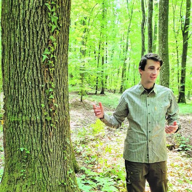 Marko Zorić, dr. šumarstva, direktor je tvrtke SALIX PLAN d.o.o., koja od 2015. radi na pripremi i provedbi projekata iz područja šumarstva i drvne industrije, sufinanciranih iz EU fondova
