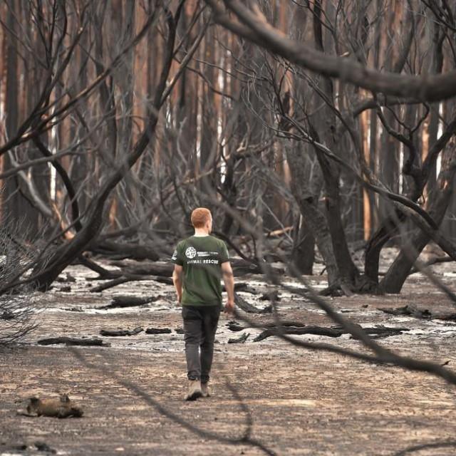 Požar u Australiji