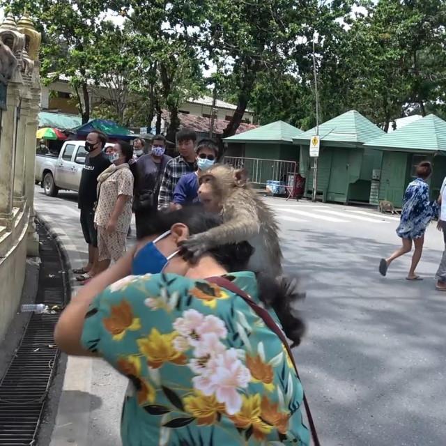Lopburi, Tajland