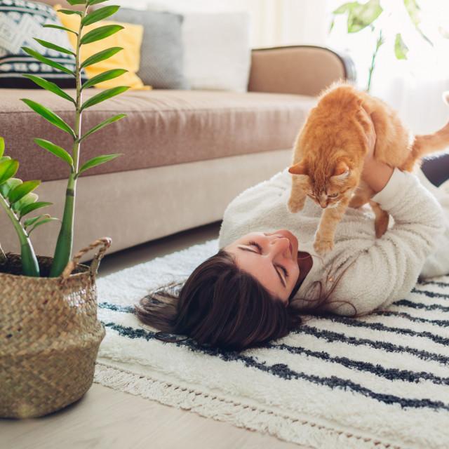 Vlasnici mačaka imaju manju vjerojatnost od ostalih da će umrijeti od srčanog udara