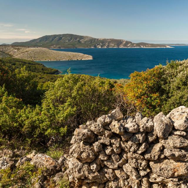 Otok Cres