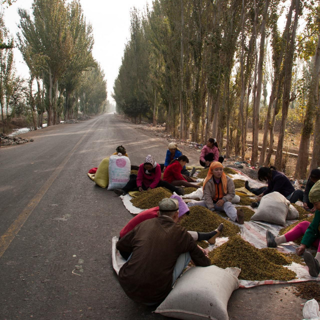 Crtica iz života Ujgura u pokjrajini Xinjiang