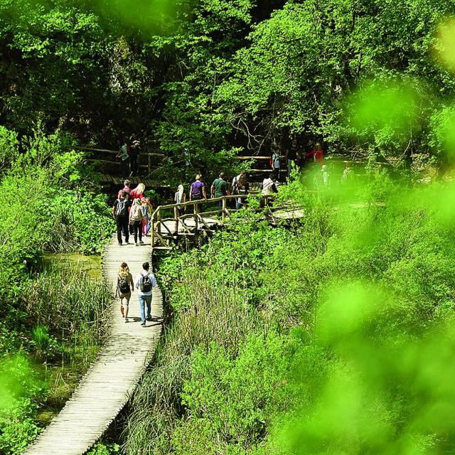 Ulaznica za nacionalni park Plitvička jezera stoji samo 50 kuna