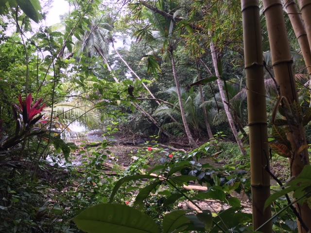 kostarika priroda