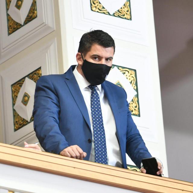 Nikola Grmoja u Saboru