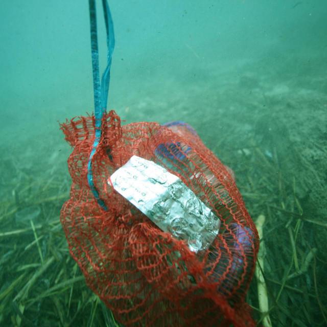 Čišćenje podmorja u Trsteniku, vala Zaglavak, od smeća koje je jugo nanijelo prije neki dan, koje je najvjerojatnije stiglo iz Albanije. Podmorje su čistili ronioci klluba Bofor i KK Neretva Mostar.