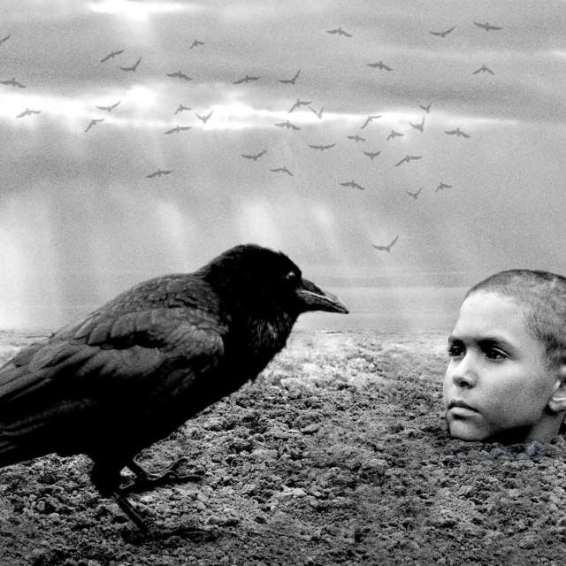 Film 'Obojena ptica'