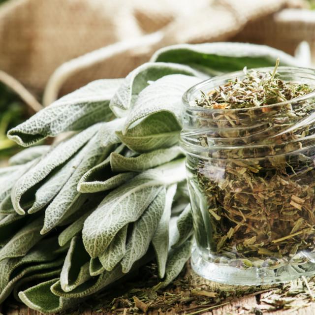 Smatra se jednom od najmoćnijih ljekovitih biljaka