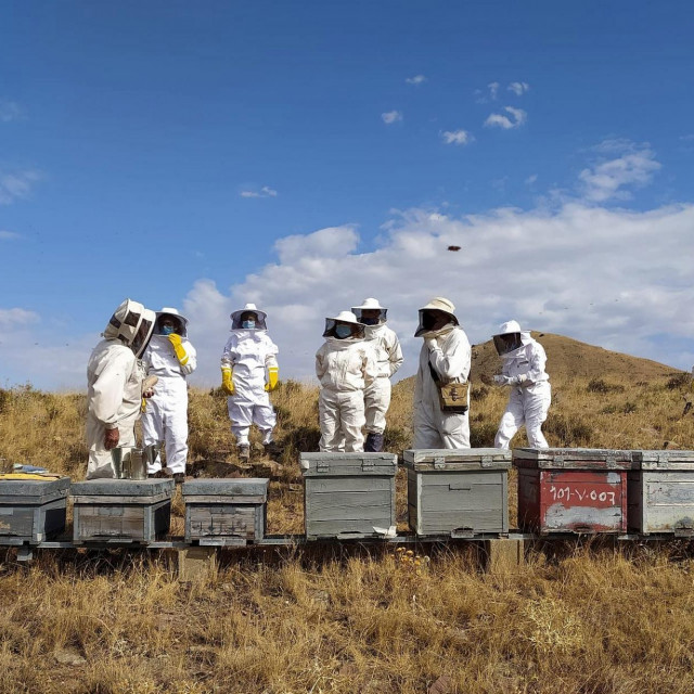 Laura Provincial i polaznici pčelarskog tečaja 2019.-2020. u Illueci. Sudionici su učitelji u centrima za stručno osposobljavanje u španjolskoj regiji Aragón.