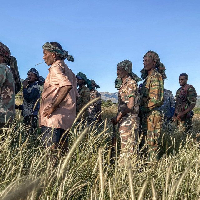Milicija Amhara