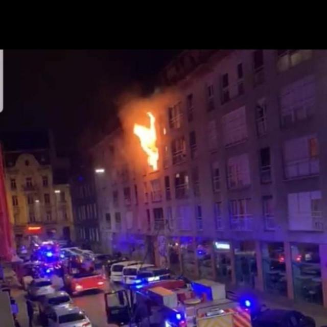 Požar u Primorskoj