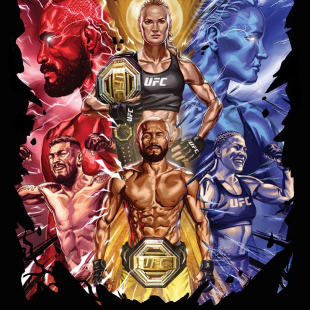 UFC 255 poster