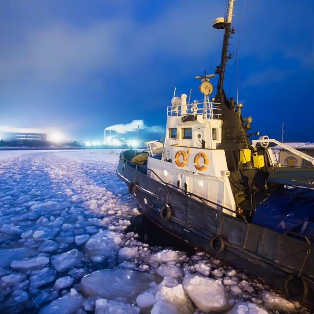 Prizor iz Arktika