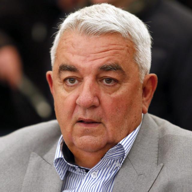 Ivan Zvonimir Čičak