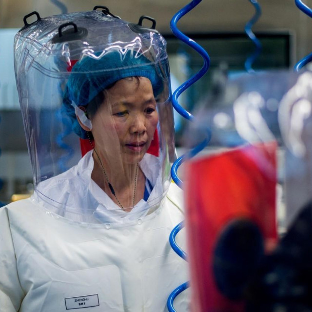 Doktorica Shi Zhengli