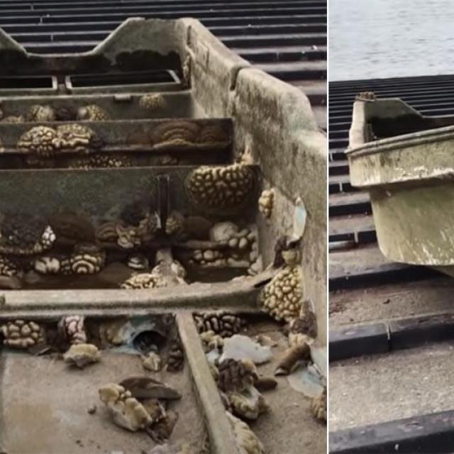 Ribarski brod nestao u tsunamiju