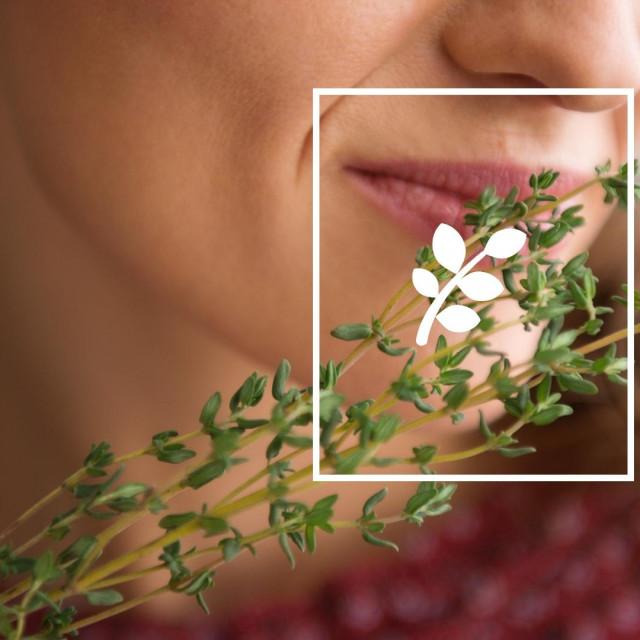 U SVIJETU ZAČINA Mirišu, daju okus i liječe