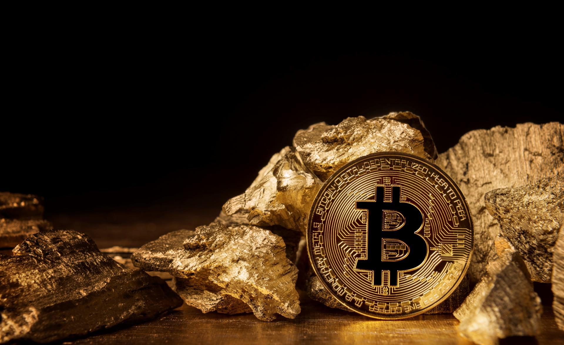 tona govedine bitcoin trgovac kako napisati bota za kripto trgovanje