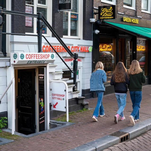 Takozvani 'kanabis turisti' dolaze samo radi konzumacije marihuane u znamenitim coffee shopovima.<br />