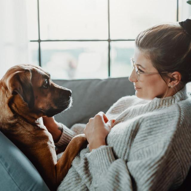 Istraživanje je proučavalo fiziološki odgovor i ponašanje 38 pasa kojima je tijekom pet dana puštano pet žanrova