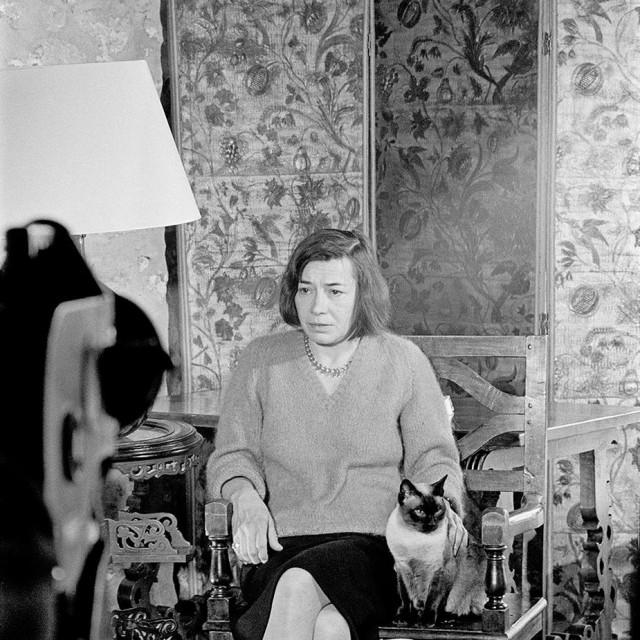 Patricia Highsmith hvaljena je kao jedna od najutjecajnijih i najslavnijih modernih spisateljica. Međutim, nikada nije postojala jasna slika žene koja stoji iza knjiga