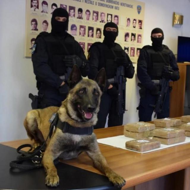 Policijski pas Johnny s kokainom kojega je nanjušio u skrovištu ispod suvozačeva sjedišta