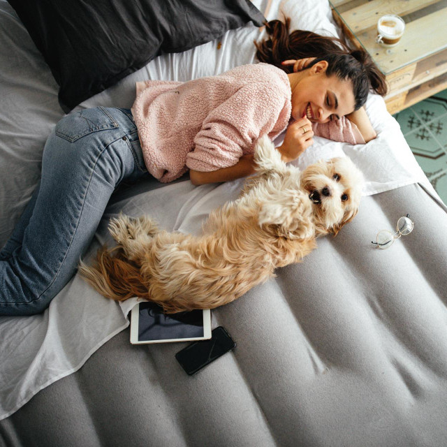 Kako biste razlikovali raspoloženja psa morate rep promatrati u različitim situacijama