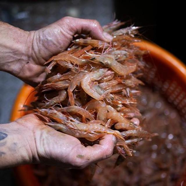 Ribarski obrt Karabatić