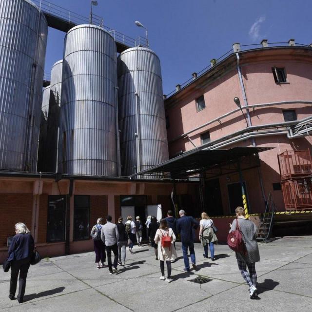Pivovara Daruvar ima tradiciju dugu više od 180 godina i najstarija je hrvatska pivovara, koja od osnivanja 1840. godine djeluje na istom mjestu/