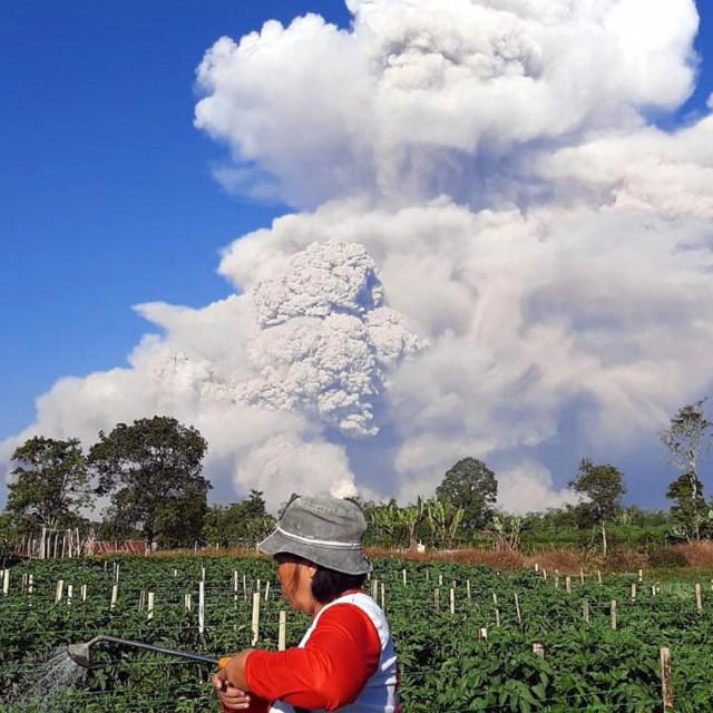 Planina Sinabung na Sumatri