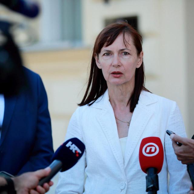 Vesna Vučemilović (Domovinski pokret)<br />