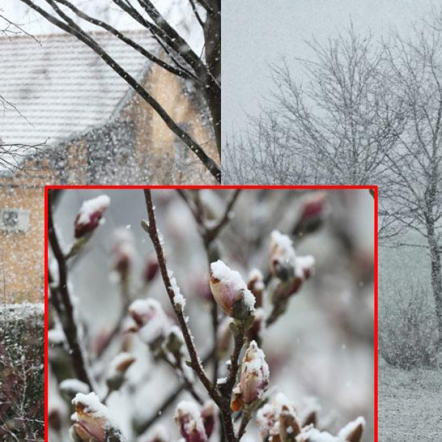 Snijeg u Osijeku