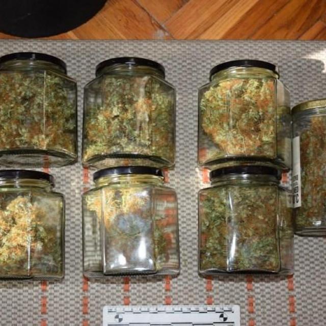 Uhićen diler koji je uzgajao marihuanu