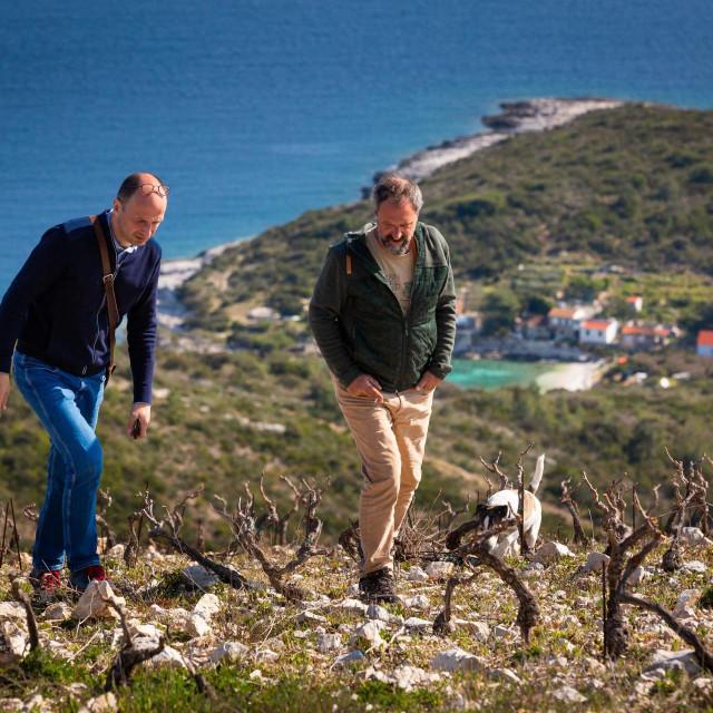 Lokalitet uvala Ruda i Sasa Spiranec,autor price I vinogradar Oliver Roki<br /> <br /> <br />