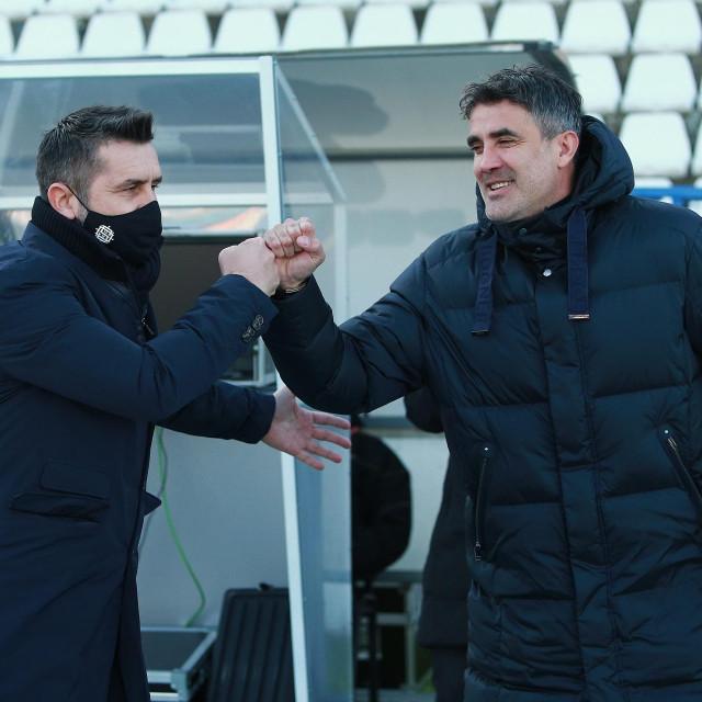 Nenad Bjelica i Zoran Mamić