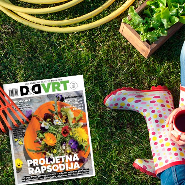 Novi broj magazina D&D VRT u prodaji od 23. travnja