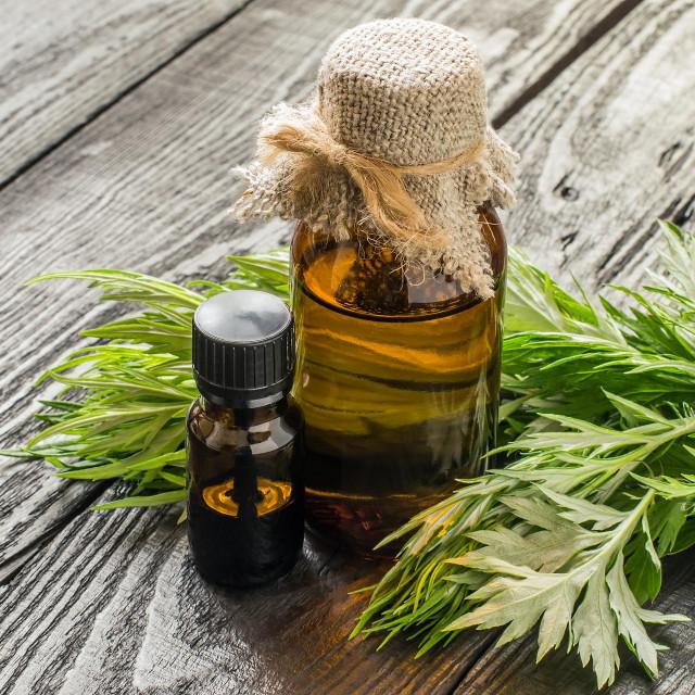 Ulje pravog pelina, koji je i poznatiji u našim krajevima, koristi se za ublažavanje bolova, a česta je i mirisna komponenta u kozmetici