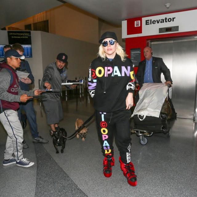 Lady Gaga sa svojim psima
