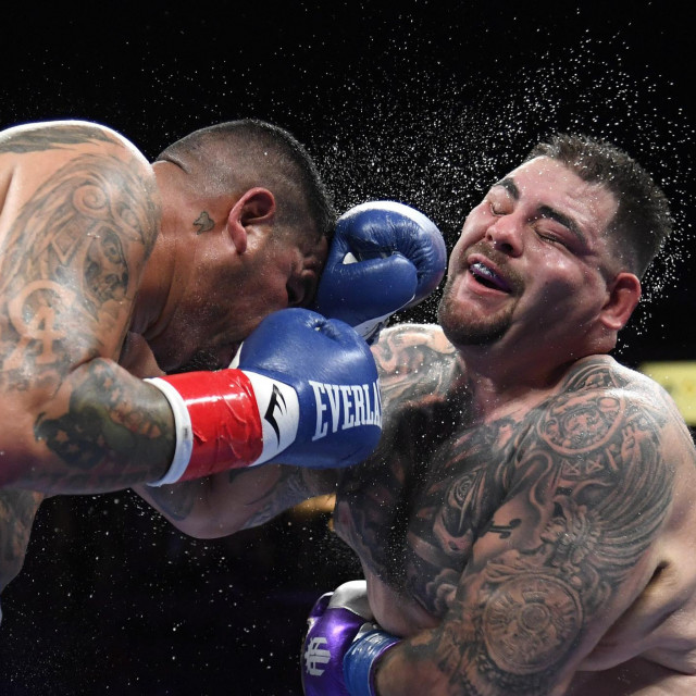 Chris Arreola vs. Andy Ruiz Jr.