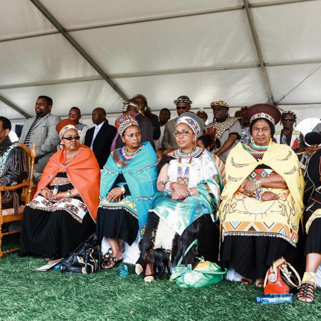Fotografija kraljevske Zulu obitelji iz 2013.